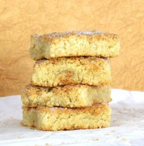 Snickerdoodle Blondies {Gluten Free with Dairy Free Option}