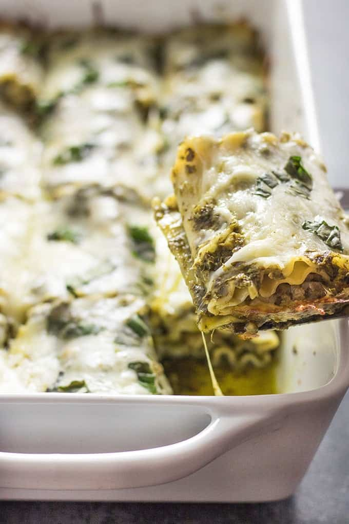 easy pesto lasagna roll ups