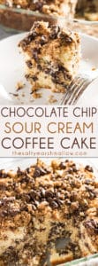 Chocolate Chip Coffee Cake - This delicious chocolate chip cake is perfect for breakfast with a hot cup of coffee!  Super moist and tender from the addition of sour cream, easy to make from scratch!