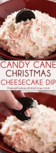 Candy Cane Christmas Dip - This rich, peppermint, cheesecake dip is perfect for all of your holiday and Christmas parties! An easy to make, sweet, dessert dip that tastes like peppermint cheesecake!