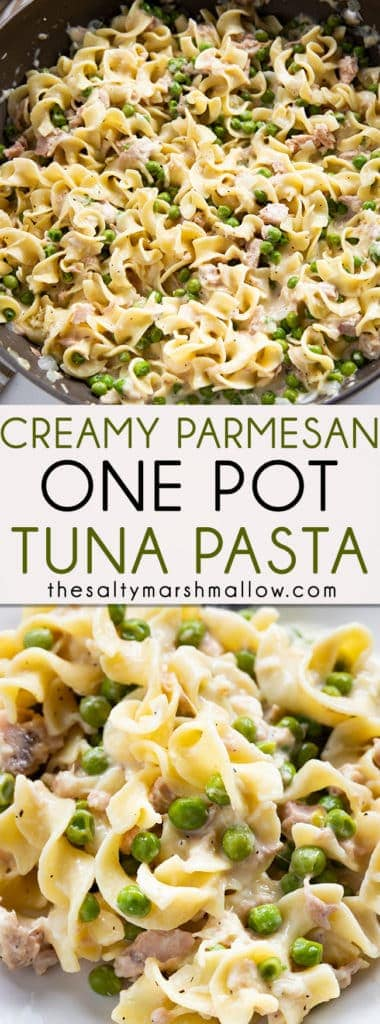 Creamy Parmesan Tuna Pasta is the easiest one pot tuna and noodles recipe! Tender pasta comes together with flavorful tuna, garlic, and parmesan cream sauce for a flavorful dinner ready in 20 minutes! #tuna #tunapasta #tunanoodles #thesaltymarshmallow