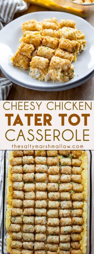 Cheesy Chicken Tater Tot Casserole - This cheesy tater tot casserole makes for one of the best family friendly weeknight dinners!  Easy to make, full of cheese, ranch seasoning, chicken, sour cream, and tater tots! #casseroles #chickendinnerrecipes #tatertotcasserole #chickentatertotcasserole #chickencasserole #thesaltymarshmallow
