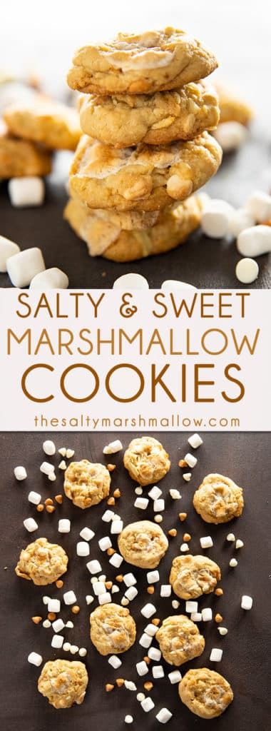 Salty Marshmallow Cookies are my take on classic potato chip cookies!  You will fall in love with these sweet and salty cookies that are full of potato chips, butterscotch chips, white chocolate, and marshmallows! #cookies #easycookierecipes #saltymarshmallowcookies #potatochipcookies #thesaltymarshmallow