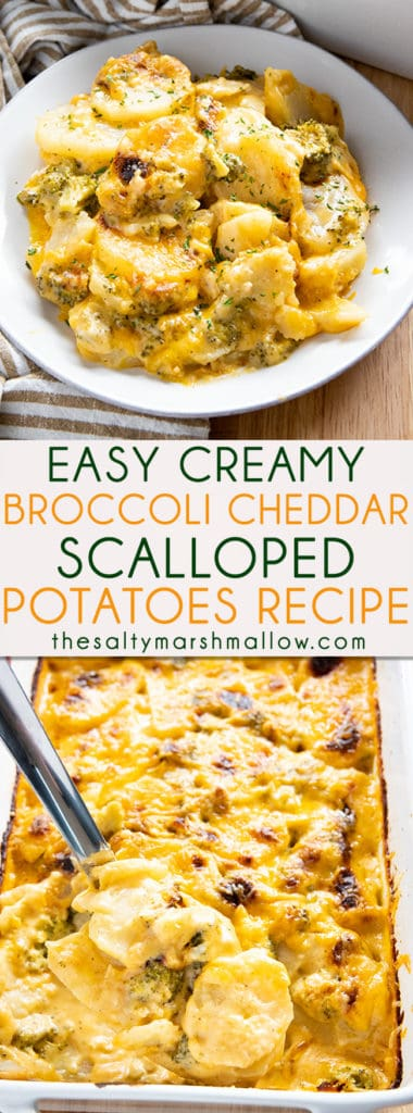 Broccoli Cheddar Scalloped Potatoes are easy to make at home from scratch!  These irresistible scalloped potatoes are drenched in a rich broccoli cheese sauce! #scallopedpotatoes #sidedishrecipes #potatorecipes #scallopedpotatoesrecipe #thesaltymarshmallow #easycheesyscallopedpotatoes