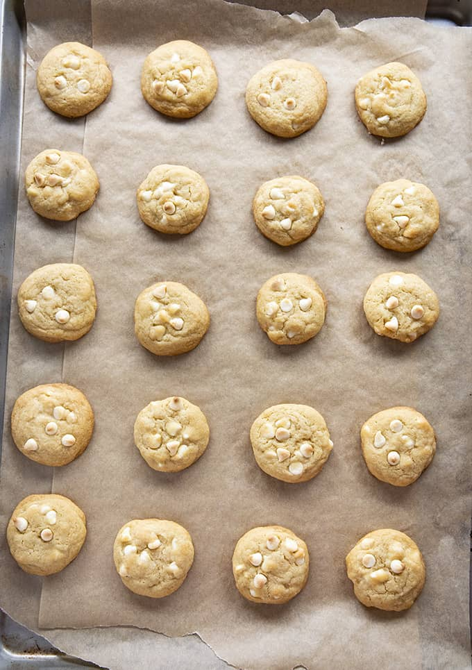 white chocolate chip cookies on sheet pan