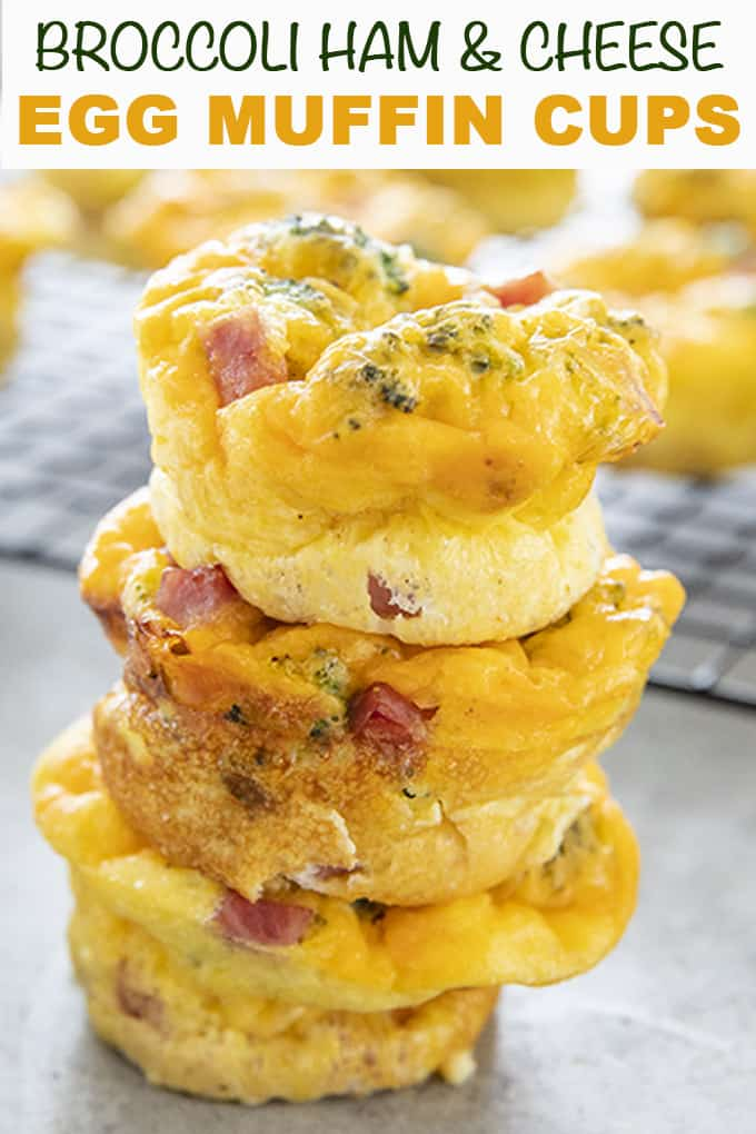 Ham & Cheese Egg Muffins are a tasty and easy way to start your day with a great breakfast!  Full of diced ham, broccoli, and cheese, these egg cups are easy to make and super satisfying!